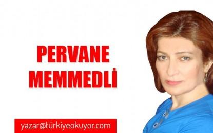 Biz Türküz soyumuz Türk ! söyleyen Kaşkay türkleri