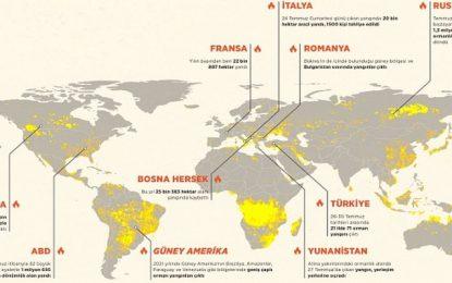 Yalnız Türkiye değil, dünya yanıyor. 40 ülkede yangınlar var